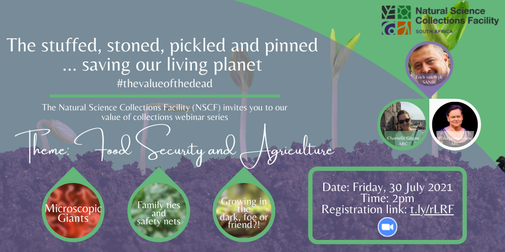 Webinar Invite | The stuffed, stoned, pickled and pinned saving our living planet