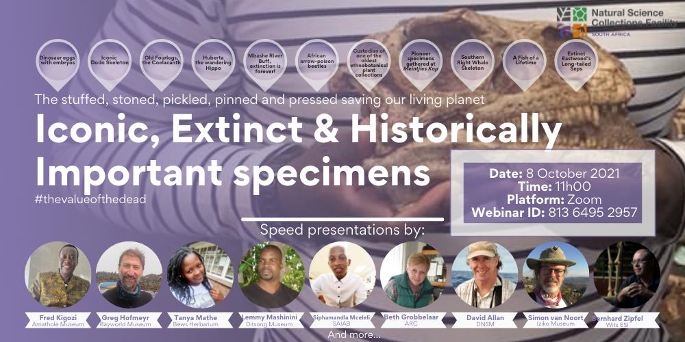Webinar Series | Iconic, Extinct & Historically Important specimens